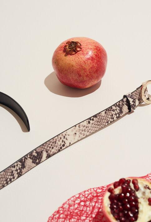 ALIGATO SNAKE : Belts color Beige